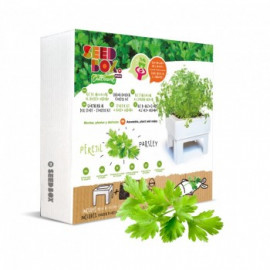 Seed Box Mini Perejil