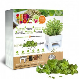 Seed Box Oregano