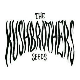 The Kush Brothers